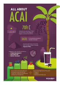 acai-infographic-en